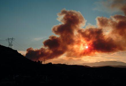 Wildfire sstock